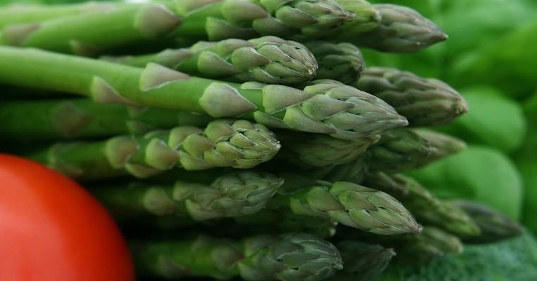 Lege Berit Nordstrand: – Din tarm vil ha fiber! Slik gjør du det.