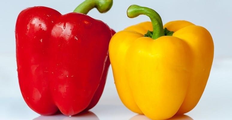Nært bilde av rød paprika til venstre og gul paprika til høyre. Nøytral bakgrunn.